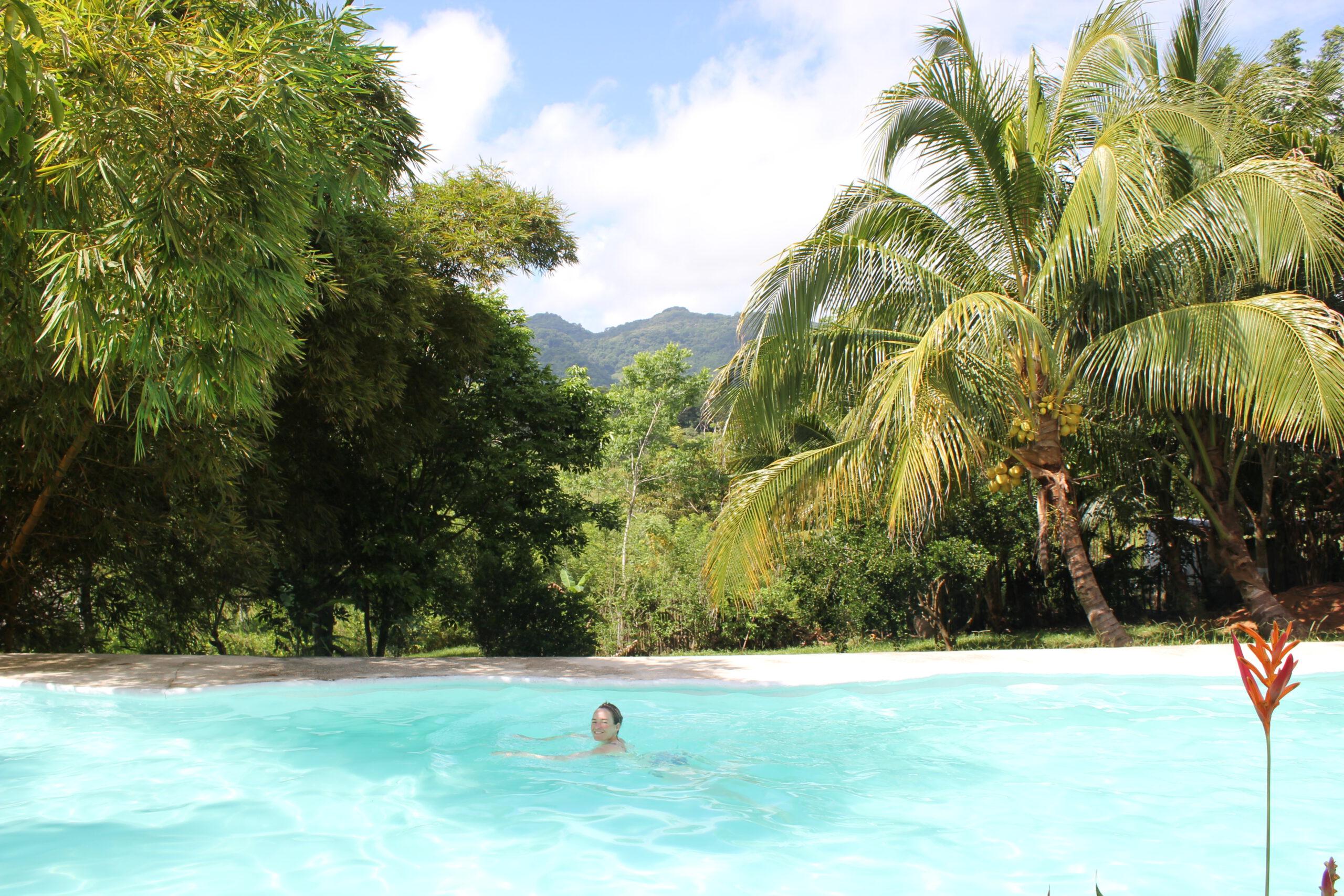 Krijg je Airbnb-servicekosten terug in 5 simpele stappen - Reisgelukjes