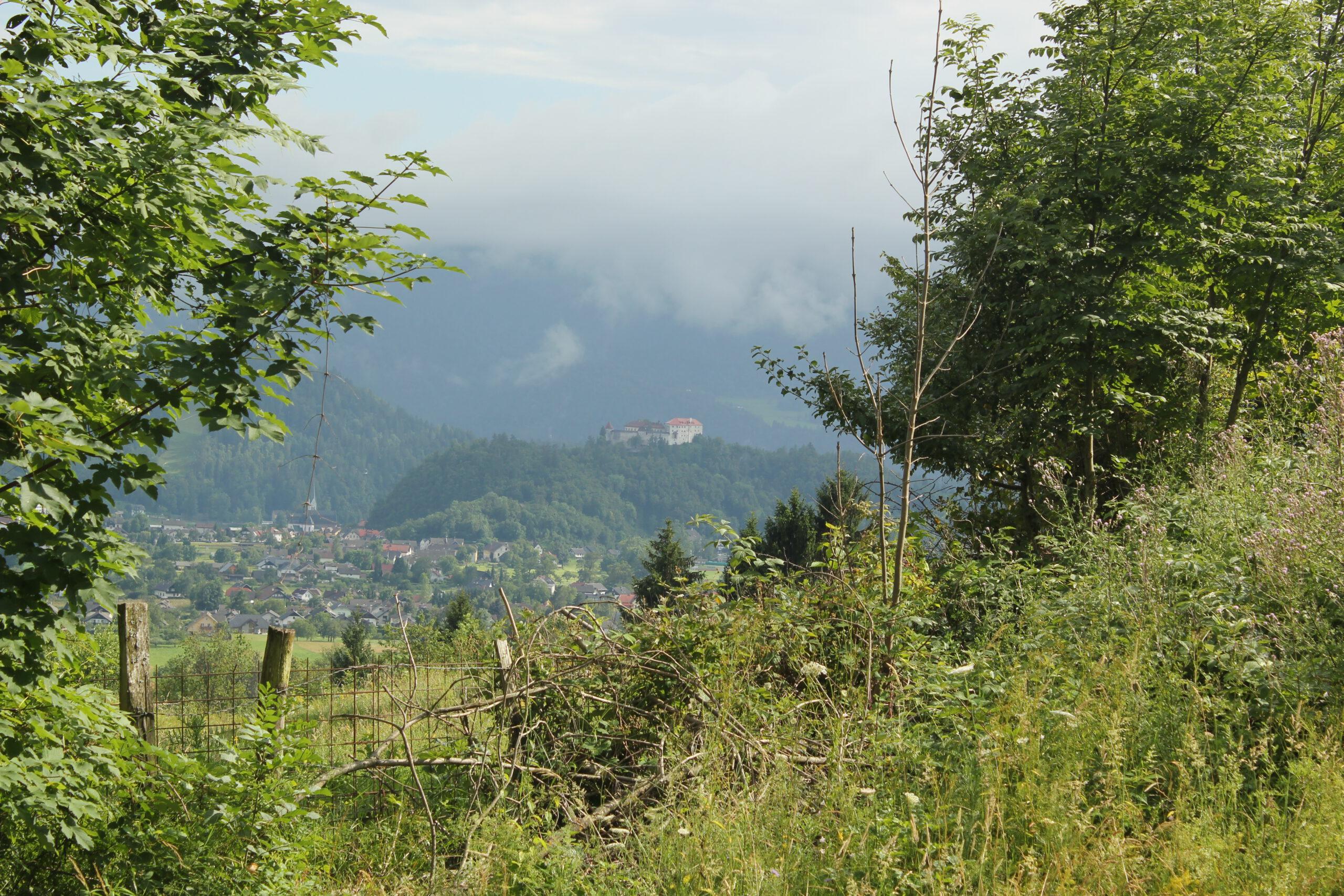 Reizen in Slovenië - Reisgelukjes - Uitzicht op Bled