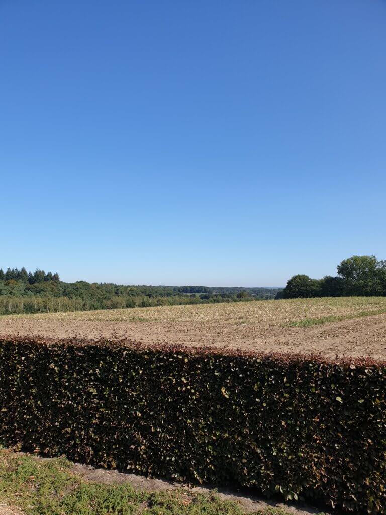 Uitzicht vanaf Groesbeek Canadian War Cemetery