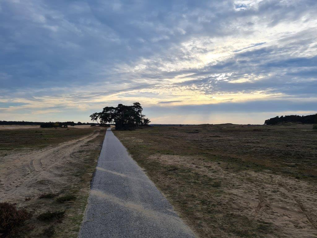 Vergezichten bij het Nationale Park De Hoge Veluwe
