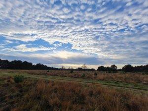 Uitzicht in het Nationale Park De Hoge Veluwe