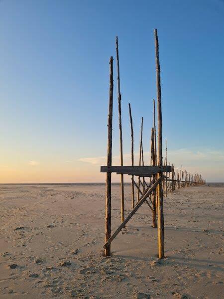 Palen van de oude steiger van Waddenveer Vlieland - Texel