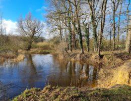 Tips voor een weekendje Twente: wandelen bij Het Lutterzand