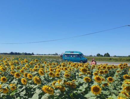 Aankooptips tweedehands camperbus