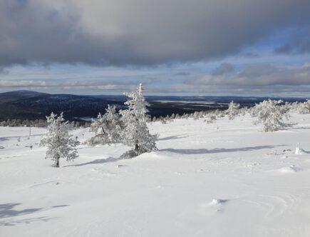 Uitzicht in winters Lapland