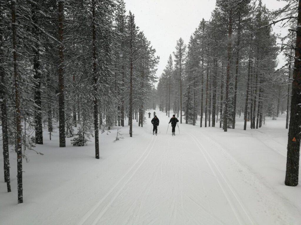 Langlaufen in het bos in Levi Finland