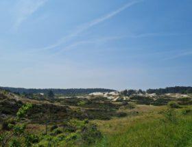 Vakantie Nederlandse kust: duinen bij Groet