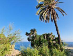 Vakantie in Spanje bij Cap de Salou