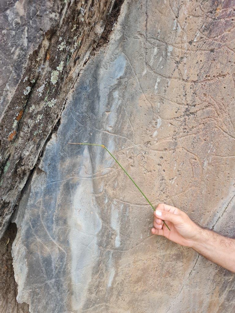 Prehistorische rotskunst bij Penascosa tijdens een vakantie in Portugalij Peniscola